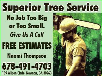 Superior_Tree